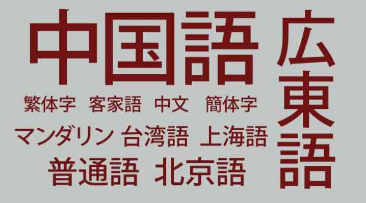 中学受験と並行し、中国語や英語を幼児・小学生が勉強。マスターは厳しい?